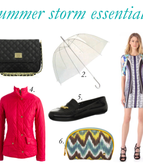 summer-storm-essentials-buy