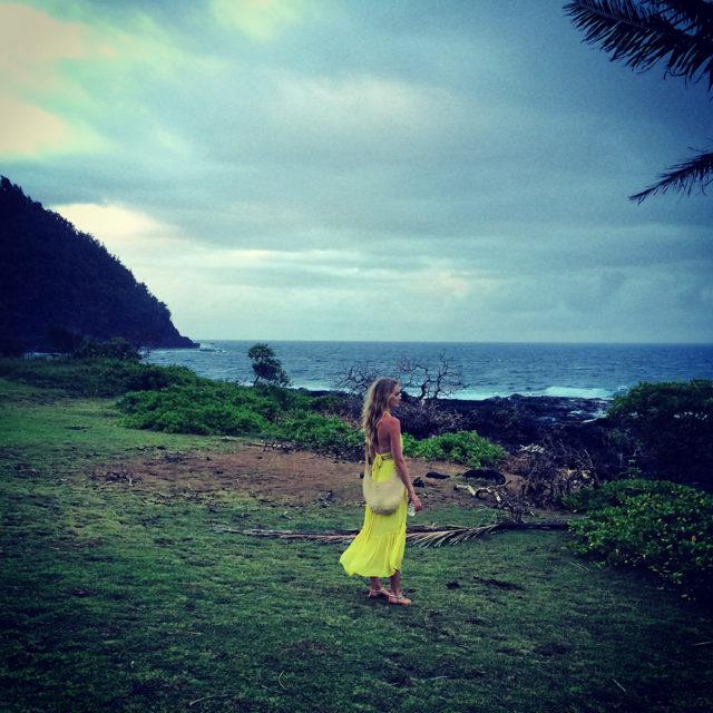 Lindsay Ellingson Tropics
