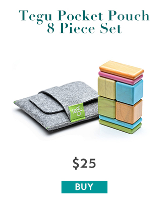 Tegu Pocket Pouch Set