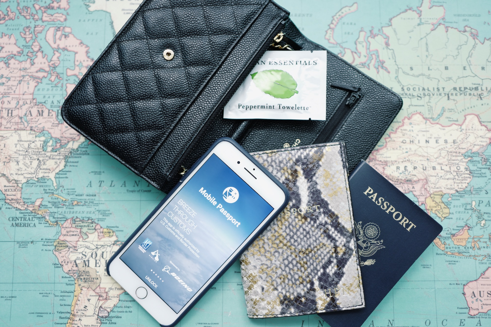 How Mobile Passport Control Actually Works