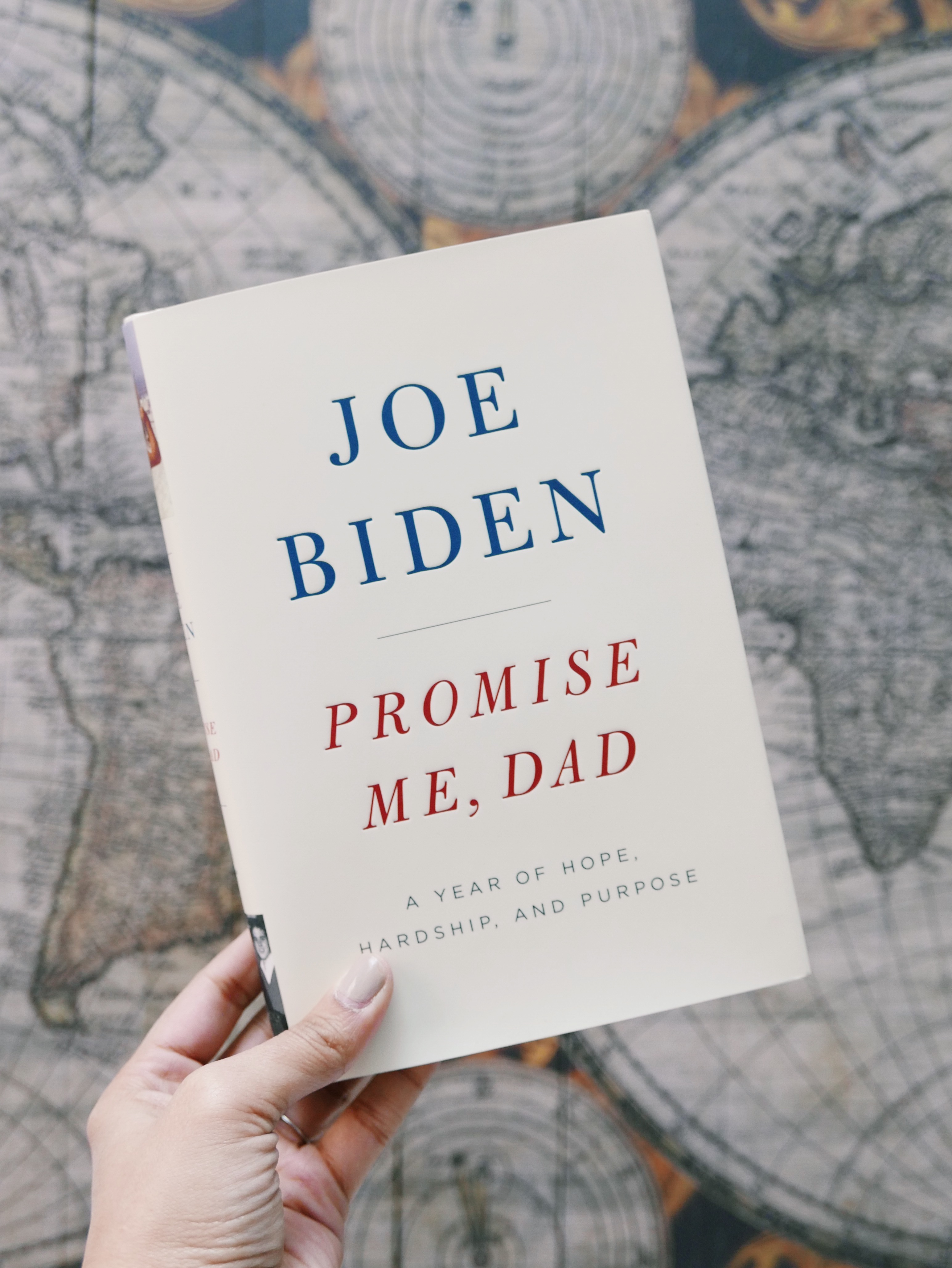 Joe Biden Book